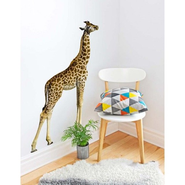 Sticker photo animal : girafe